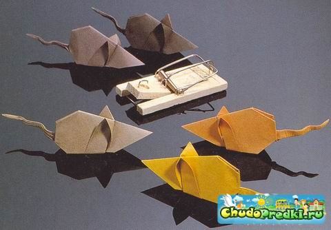 Оригами для начинающих